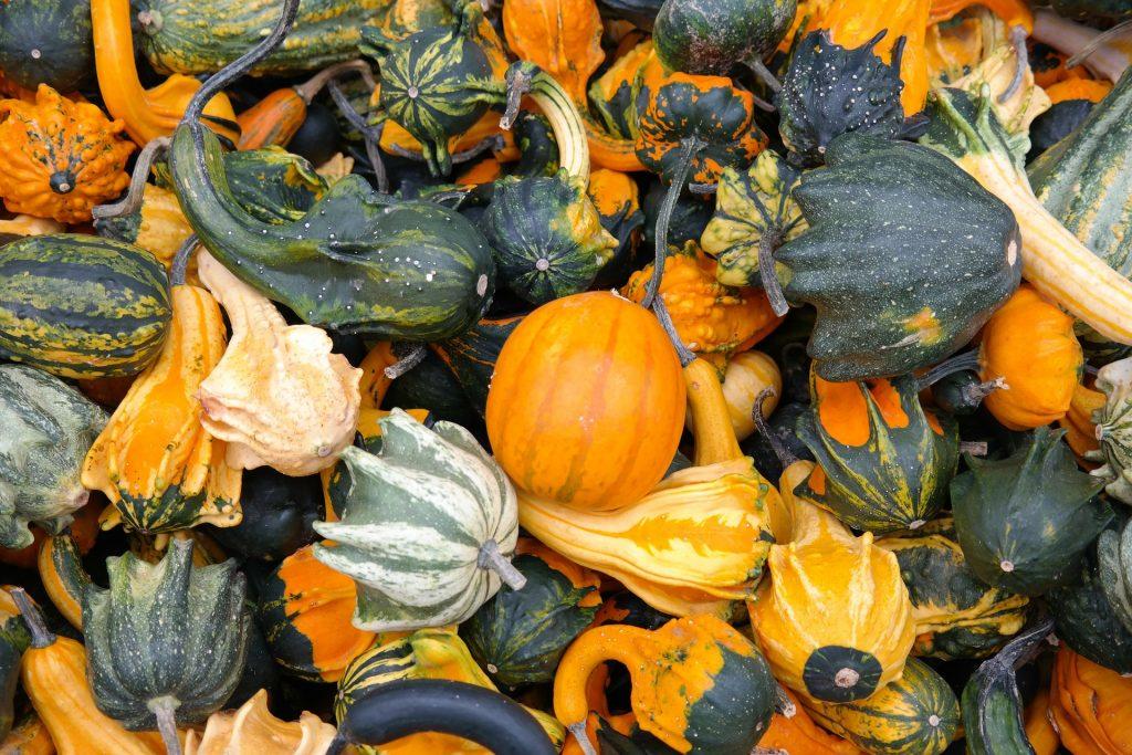 verdura de otoño