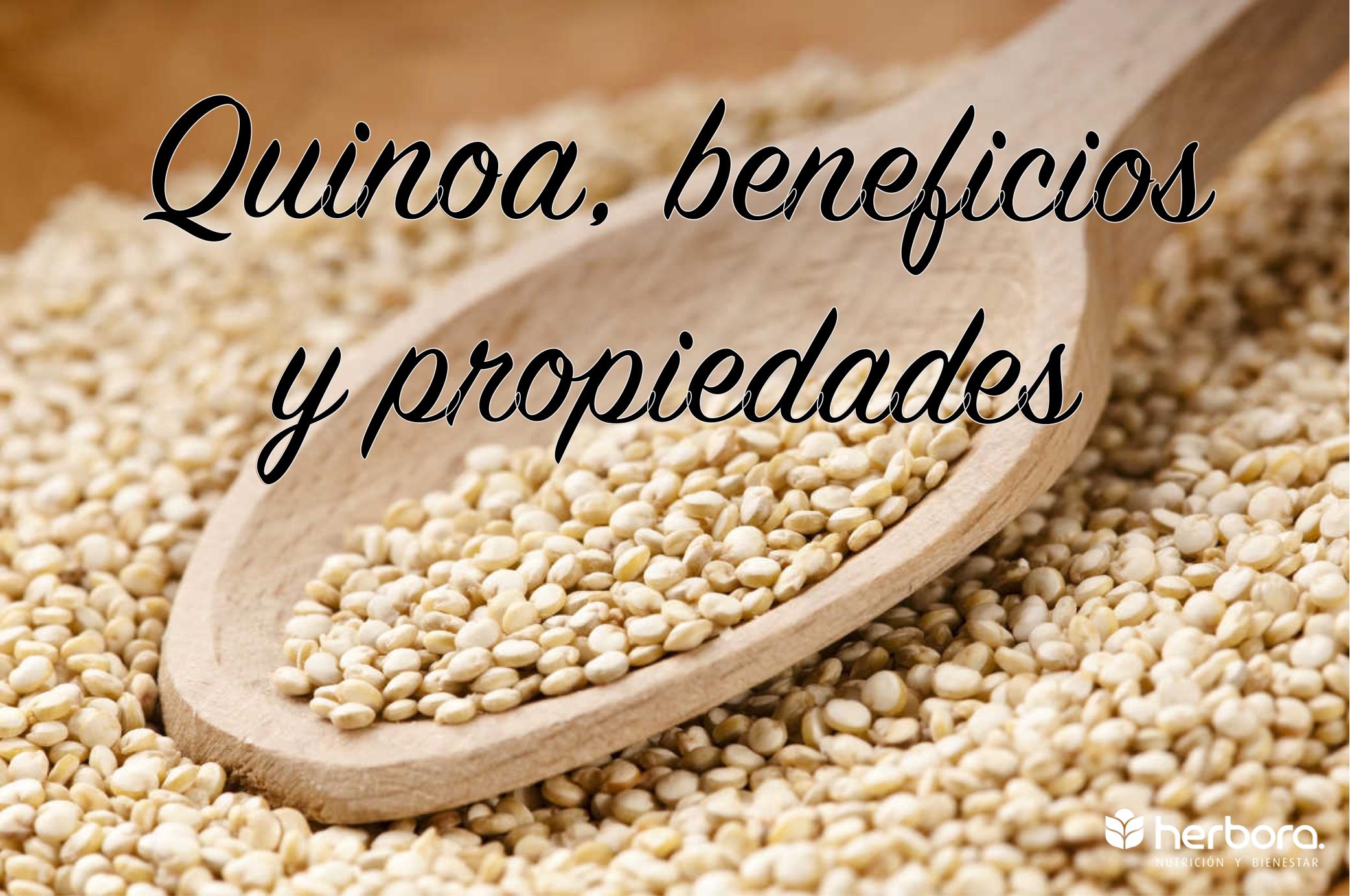 Quinoa, beneficios y propiedades