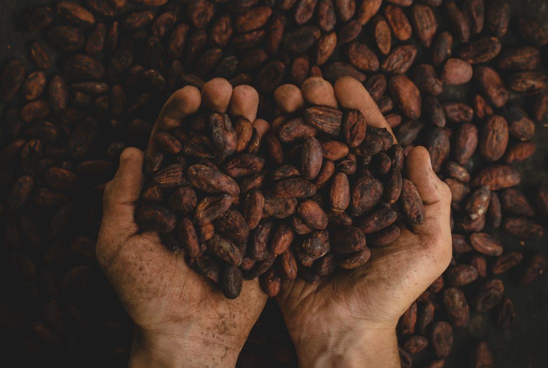 El cacao; beneficios y propiedades