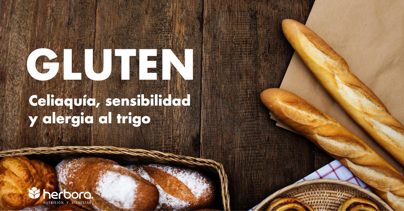 Gluten; Diferencias entre celiaquía, sensibilidad al gluten y alergia al trigo