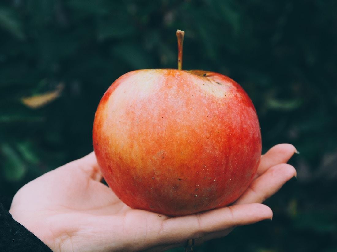 piel de manzana