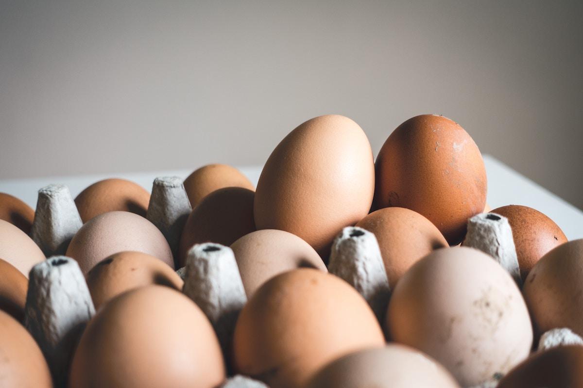 vitaminas del grupo b huevos