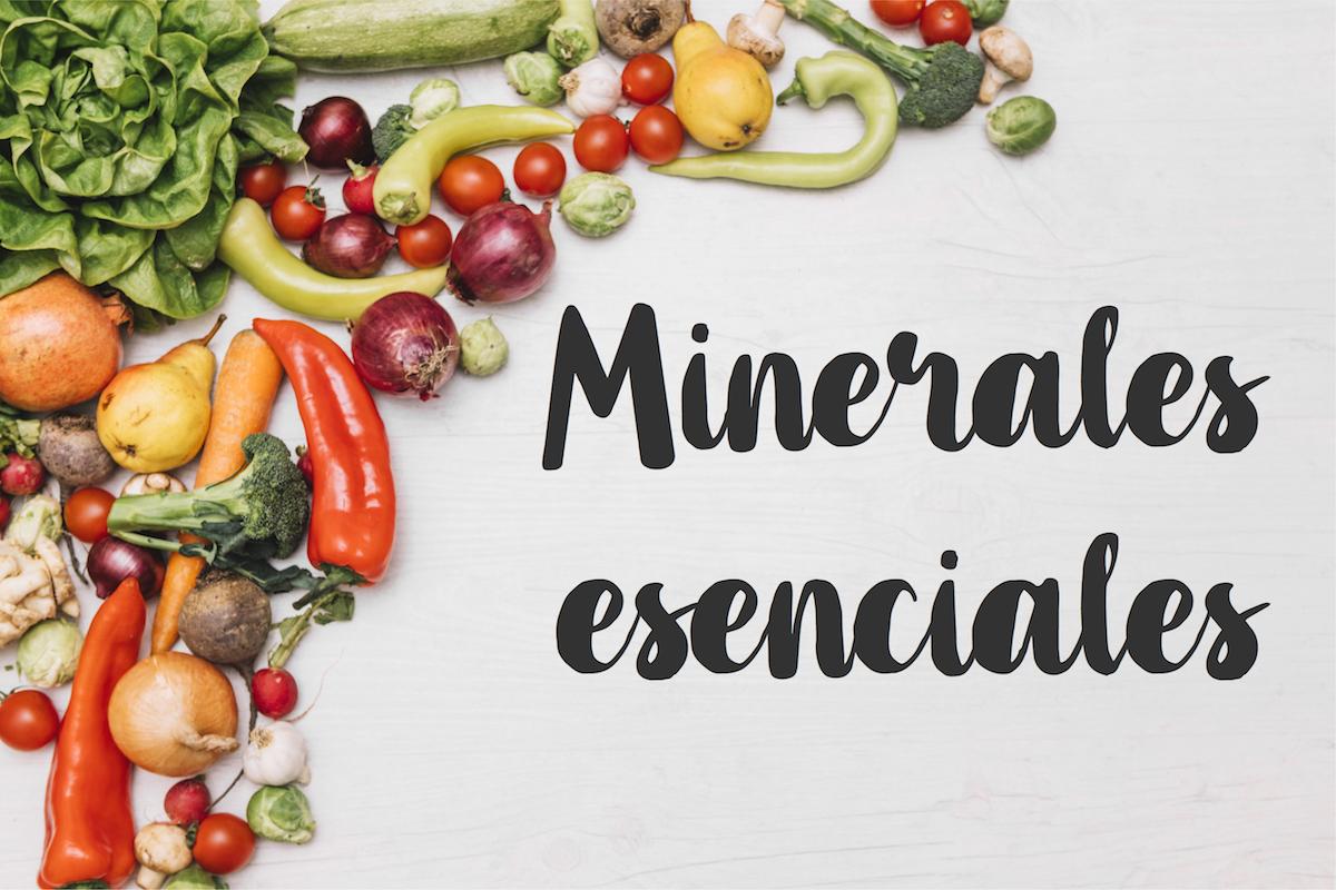 Minerales esenciales, todo lo que debes saber