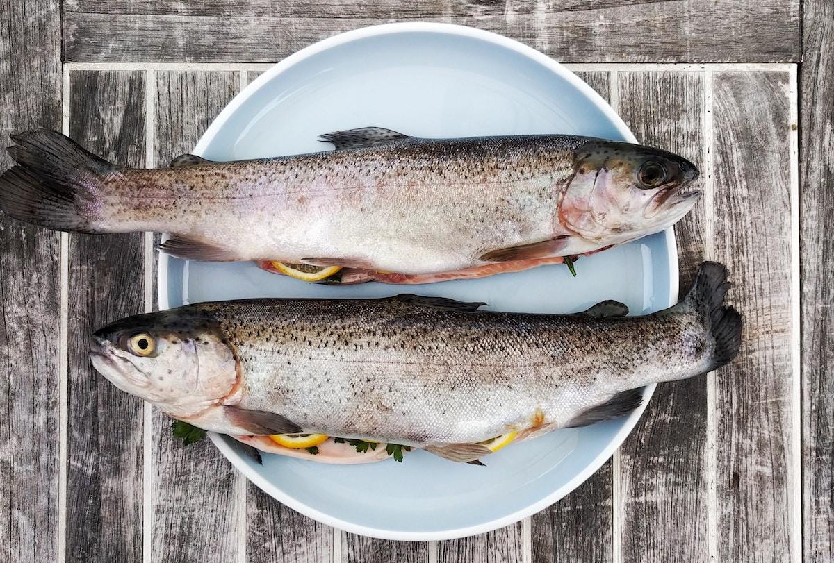 alimentos para el colesterol pescado