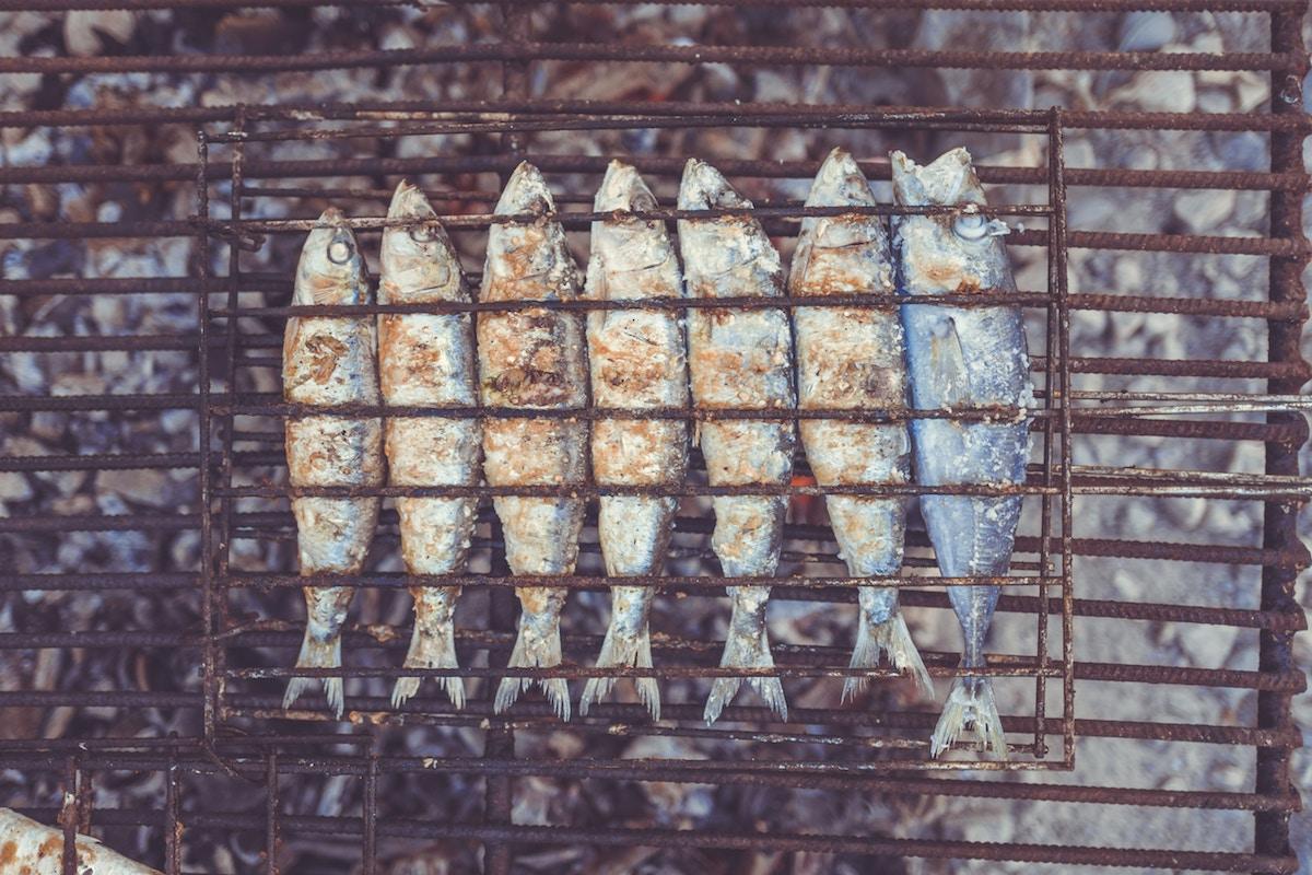 sardinas fosforo