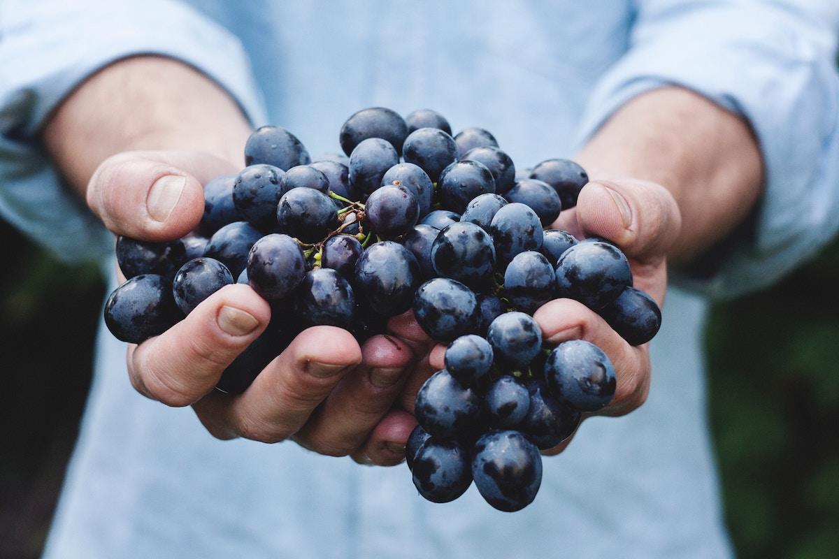 beneficios uvas y propiedades