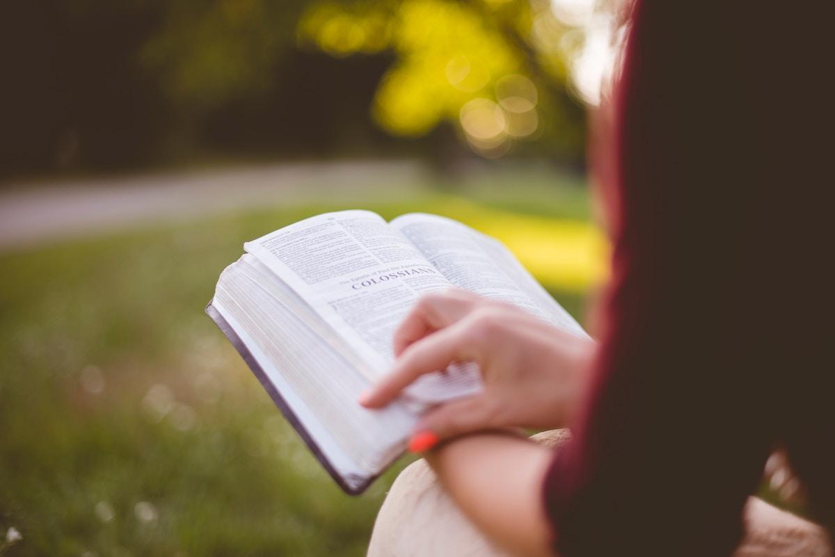 7 Beneficios de leer para el día a día