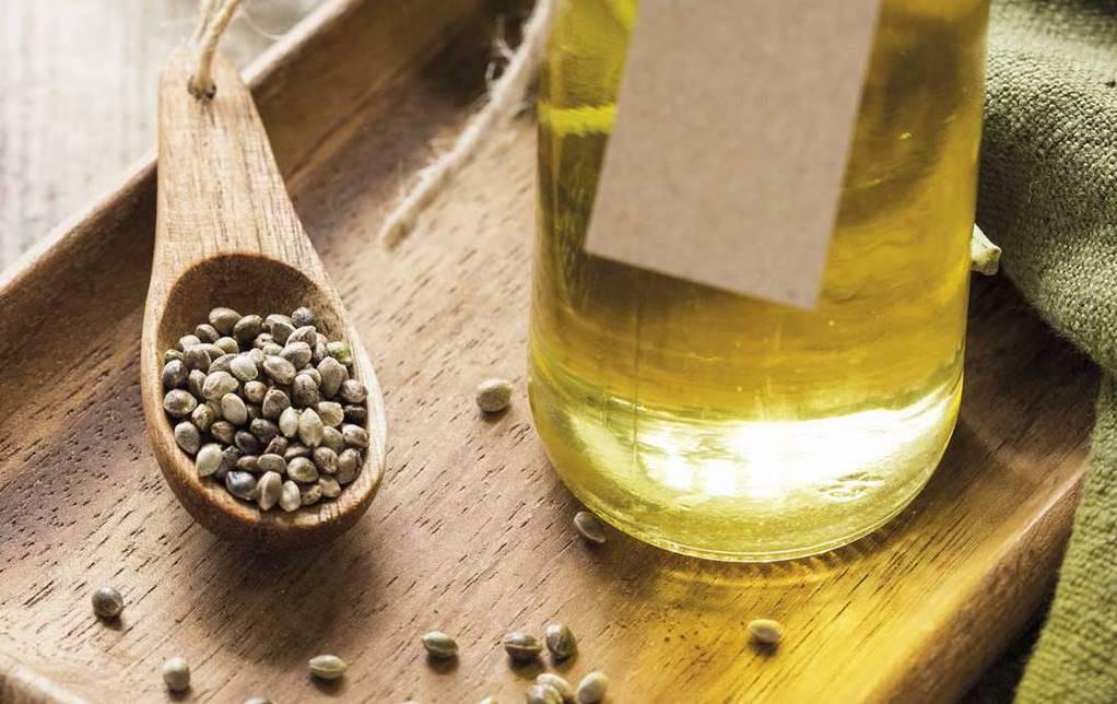 semillas de cañamo aceite