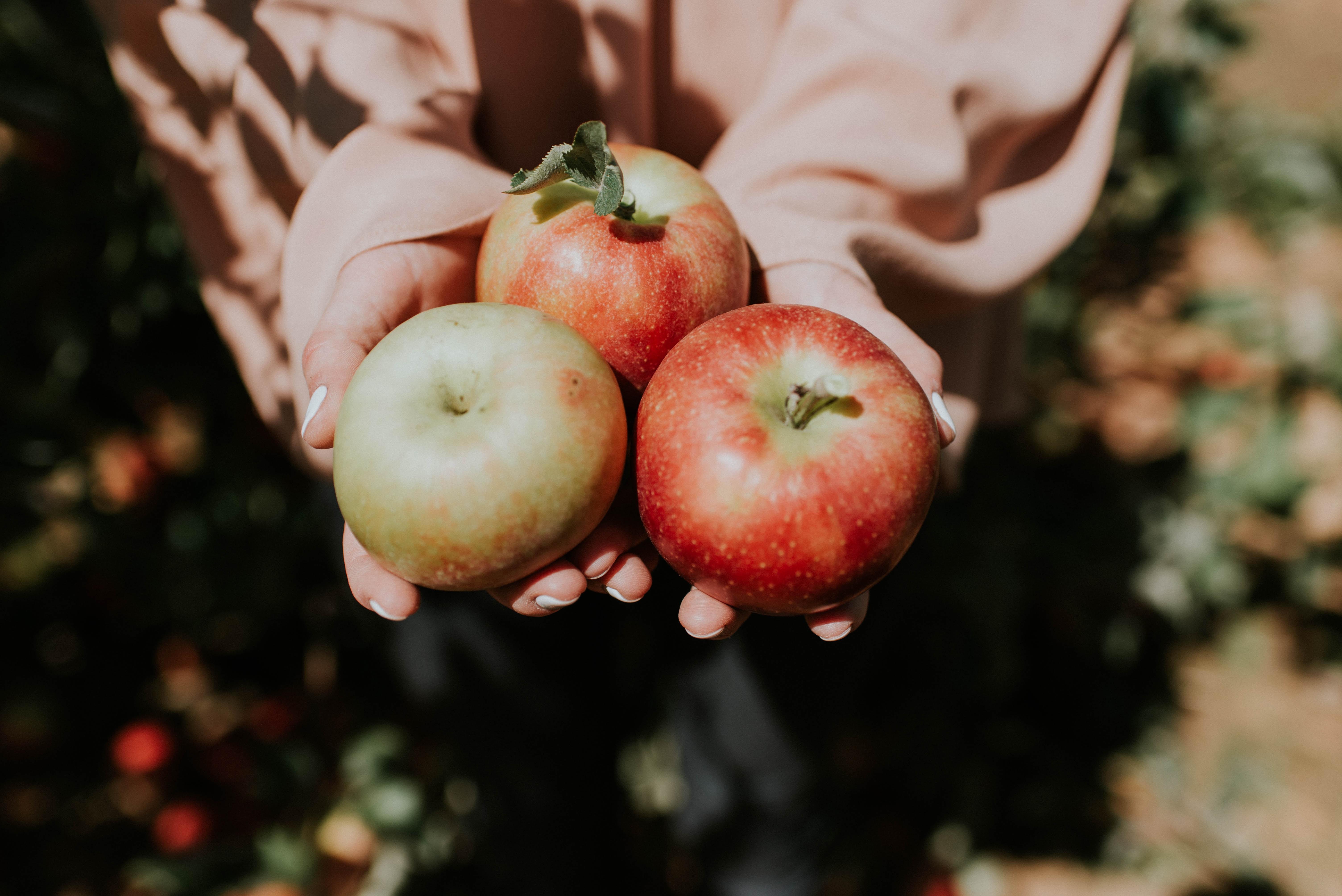 Frutas de otoño y por qué tomarlas