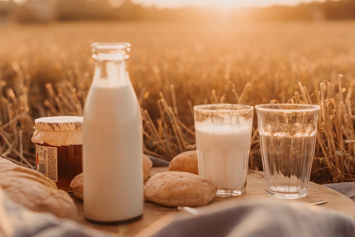 leche alimentos proteinas