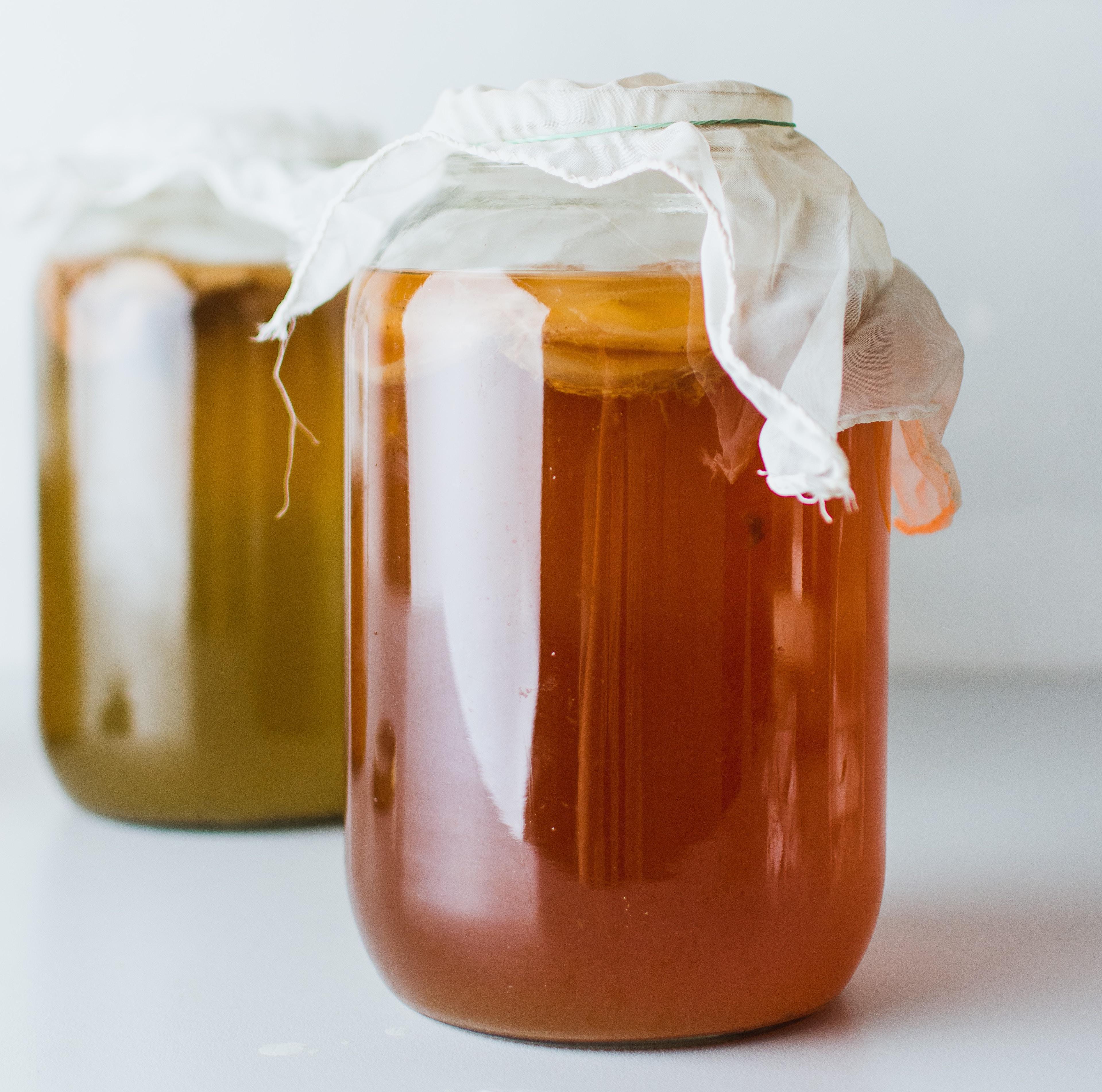 fermentación kombucha